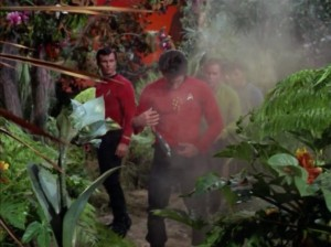 They beam done to another planet that seems like a paradise, but it isn't long before red shirts start getting shot by flowers