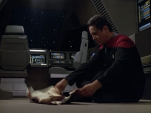 Janeway lets Chakotay borrow a shuttlepod to do some ritual.