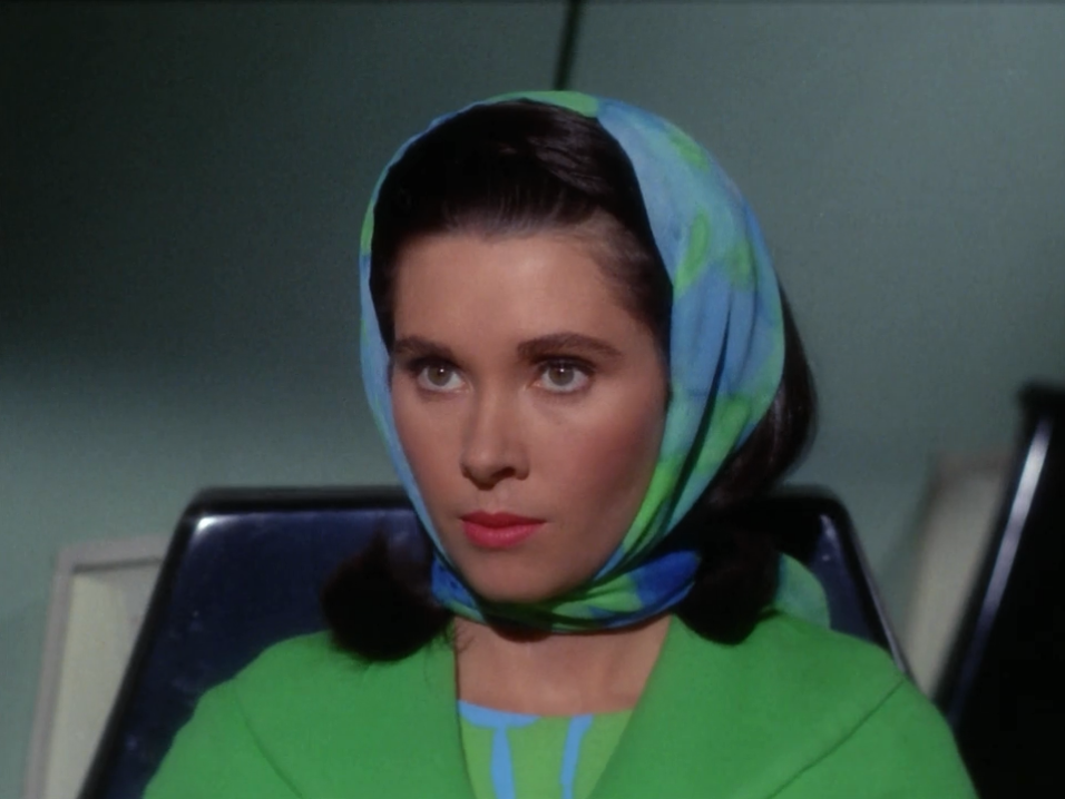 """Bones, Spock and Kirk pick up a commissioner that was in the middle of stopping a war because she got a rare disease that can be treated on the Enterprise. She emphasizes the importance of her work and wanting to get back to it as soon as possible. She also always says """"the starfleet""""."""