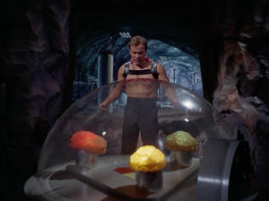 """Kirk finally meets """"the providers."""" He provokes them into wagering everyone's freedom if he wins a fight. If he loses the whole crew of the Enterprise will become slaves!"""
