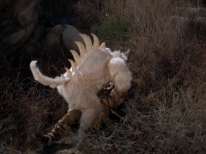 Kirk gets attacked by a monster. Things aren't going that well