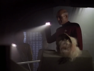 Enterprise finds a ship left over from a war that happened 1,000 years ago. Picard wants to check it out himself!
